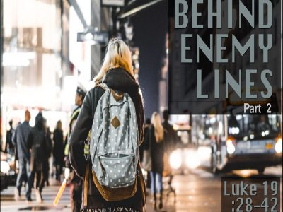 Luke 19:28-44