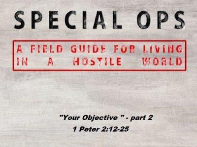 1 Peter 2:12-25