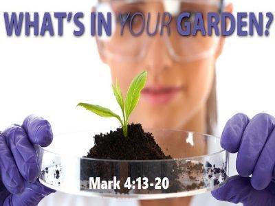 Mark 4:13-20